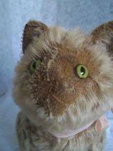 初期シュタイフのネコ